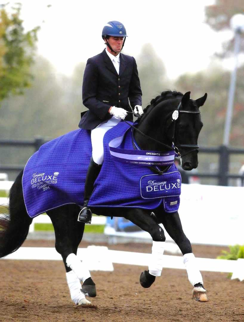 Don Dante and Owen Cooper Dressage Champions
